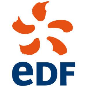 Press_EDF_coupe_du_monde